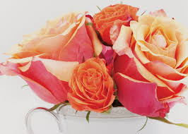 Multicolor Roses What Do Your Roses Mean Best Market