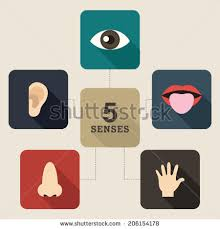 cartoon body parts stock images royalty free images u0026 vectors
