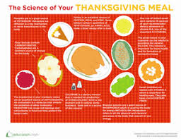 thanksgiving science worksheet education