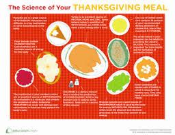 5th grade thanksgiving worksheets u0026 free printables education com