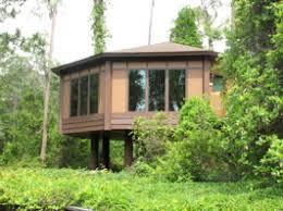 Treehouse Villas At Disney World - pleasure island paradiso 37 saratoga springs treehouse villas