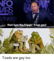 Too Gay Meme - that turn the friggin frogs gay dank meme on sizzle