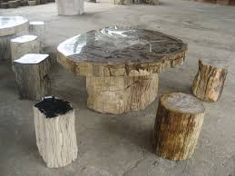 Petrified Wood Bench Diy Petrified Wood Coffee Table U2014 The Wooden Houses