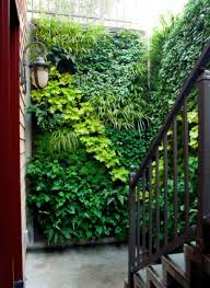 fake but idea filled green walls are the perfect solution for