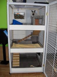 How To Build A Rabbit Hutch And Run 17 Best Images About Pets On Pinterest Guinea Pigs A Bunny And