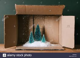 miniature of trees with snow in a cardboard box concept