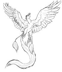 13 images of phoenix coloring pages drawings phoenix bird