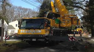 marquis tree removal trimmer service company ma