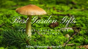 best unique gardening gift ideas for gardeners this christmas