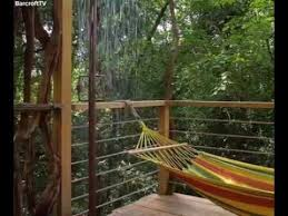 most expensive tree house in d world