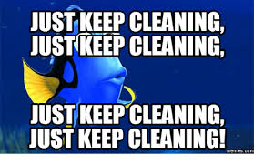cleaning meme seyvid