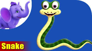 snake rhymes snake animal rhymes videos for children youtube