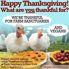thanksgiving archives veganification