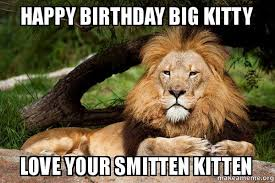 Happy Kitten Meme - happy birthday big kitty love your smitten kitten contemplative