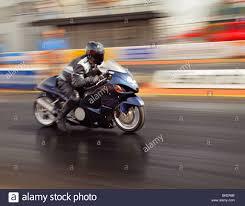 suzuki motorcycle hayabusa suzuki hayabusa motorcycle in action at santa pod stock photo