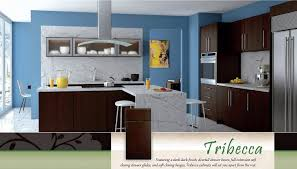 Flat Front Kitchen Cabinets Slab Kitchen Cabinet Doors Home Decoration Ideas