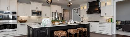 Kitchen Cabinets Tampa Fl by Cabinets Com Tampa Fl Us 33606