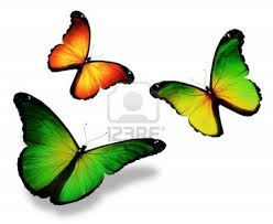 green yellow butterfly ideas tattoos yellow