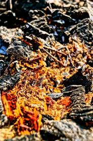 charred remains u2013 photo by christopher j cart 2013 hris topher