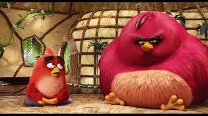 nice chatting u0027 clip angry birds movie cinemas