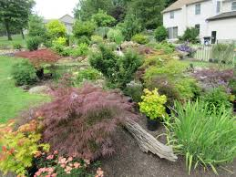 best 25 california native landscape 10 best ornamental trees for southeastern pa gardens turpin