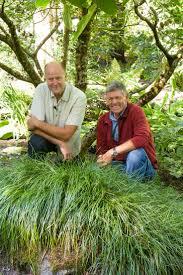 Mythos Silverline Greenhouse 92 Best Garden Inspiration Images On Pinterest Gardening Plants