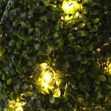 Pre Lit Topiary Pre Lit Topiary Ball 30cm 20 Warm White Led Lights Free