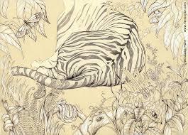 tiger back sketch by heliocyan on deviantart
