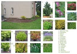 landscape design ideas front of house 28 images outstanding