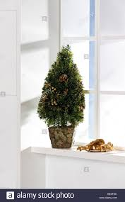 christmas tree decoration on a windowsill stock photo royalty