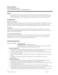 Skill Set In Resume Examples by Skill Set Resume Examples Resume Template 2017