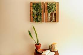 Air Plant Wall Holder The 31 Cutest And Most Creative Diy Planters