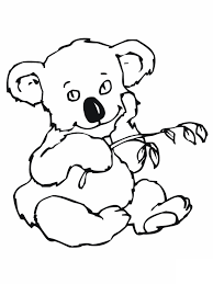 koala bear coloring page free printable koala coloring pages for