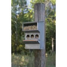 Backyard Buddies Country Bird Feeders U0026 Cages Sweetcountrystyle Com