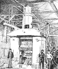 popular science monthly volume 40 november 1891 the development of