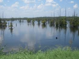 Louisiana lakes images 12 of the best lakes in louisiana for swimming and boating jpeg