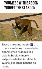 Baboon Meme - you mess with baboon youget the staboon these make me laugh