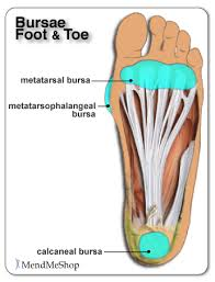 Top Foot Anatomy Foot Bursitis Bursitis Of The Foot