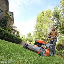 how to revive grass thinning lawn family handyman
