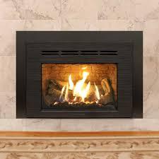 wood and gas burning fireplace cpmpublishingcom