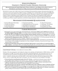 Professional Highlights Resume Examples by Free Executive Resume Templates 34 Free Word Pdf Documents