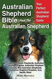 7 month old australian shepherd puppy australian shepherds complete pet owner u0027s manual d caroline