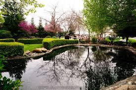 Wedding Venues In Fresno Ca Evergreen Island In Tulare California For An Outdoor Wedding