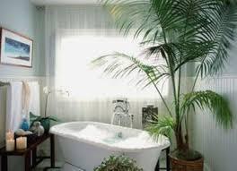 palm tree home decor bathroom amazing good bathroom plants home design very nice