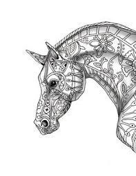 horse coloring adults illustration keiti davlin