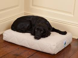 pillow top dog bed memory foam pillow top dog bed 3 dog pet supply