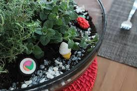 create your own herb terrarium centerpiece brit co