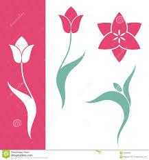 Ottoman Tulip by Tulip Vector Google U0027da Ara Lale Pinterest