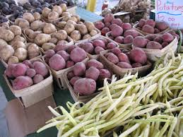 Spanish Root Vegetables - the san miguel news july 2008