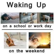 So True Memes - meme funny school true on instagram